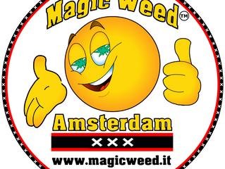 Magic Weed annuncia nuovo dominio & restyling del logo ufficiale.