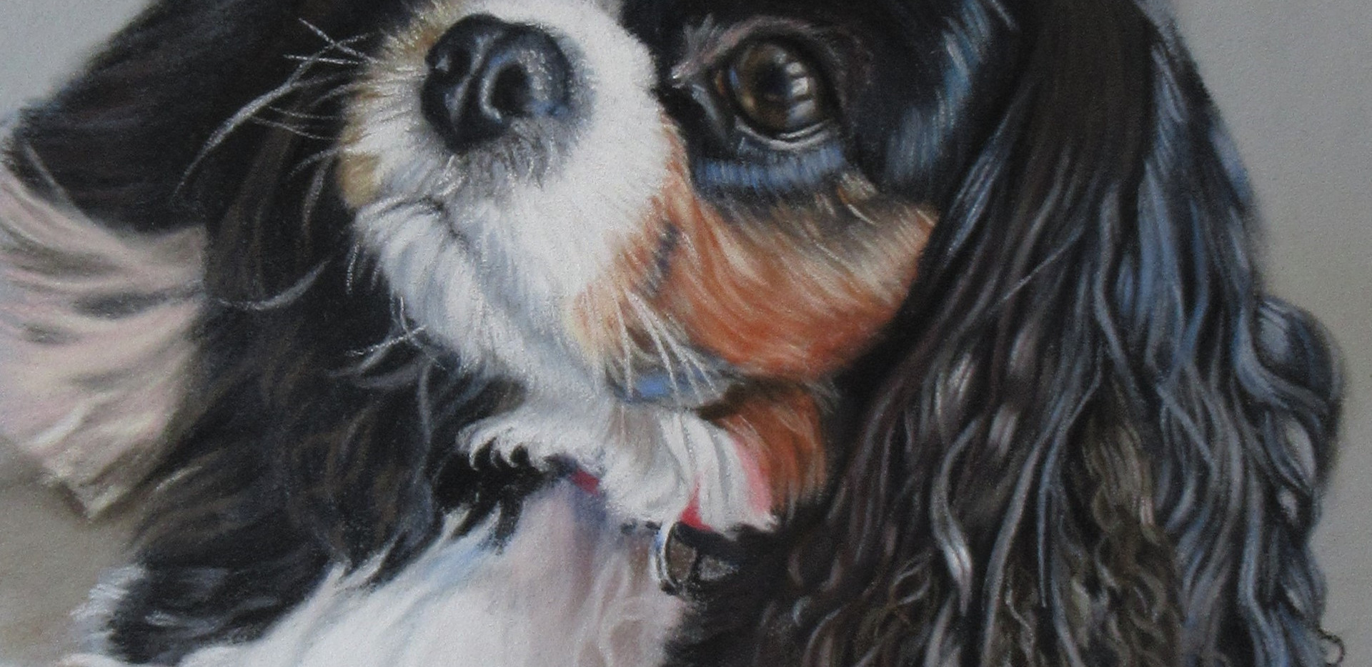 Pastel drawing of Pepper