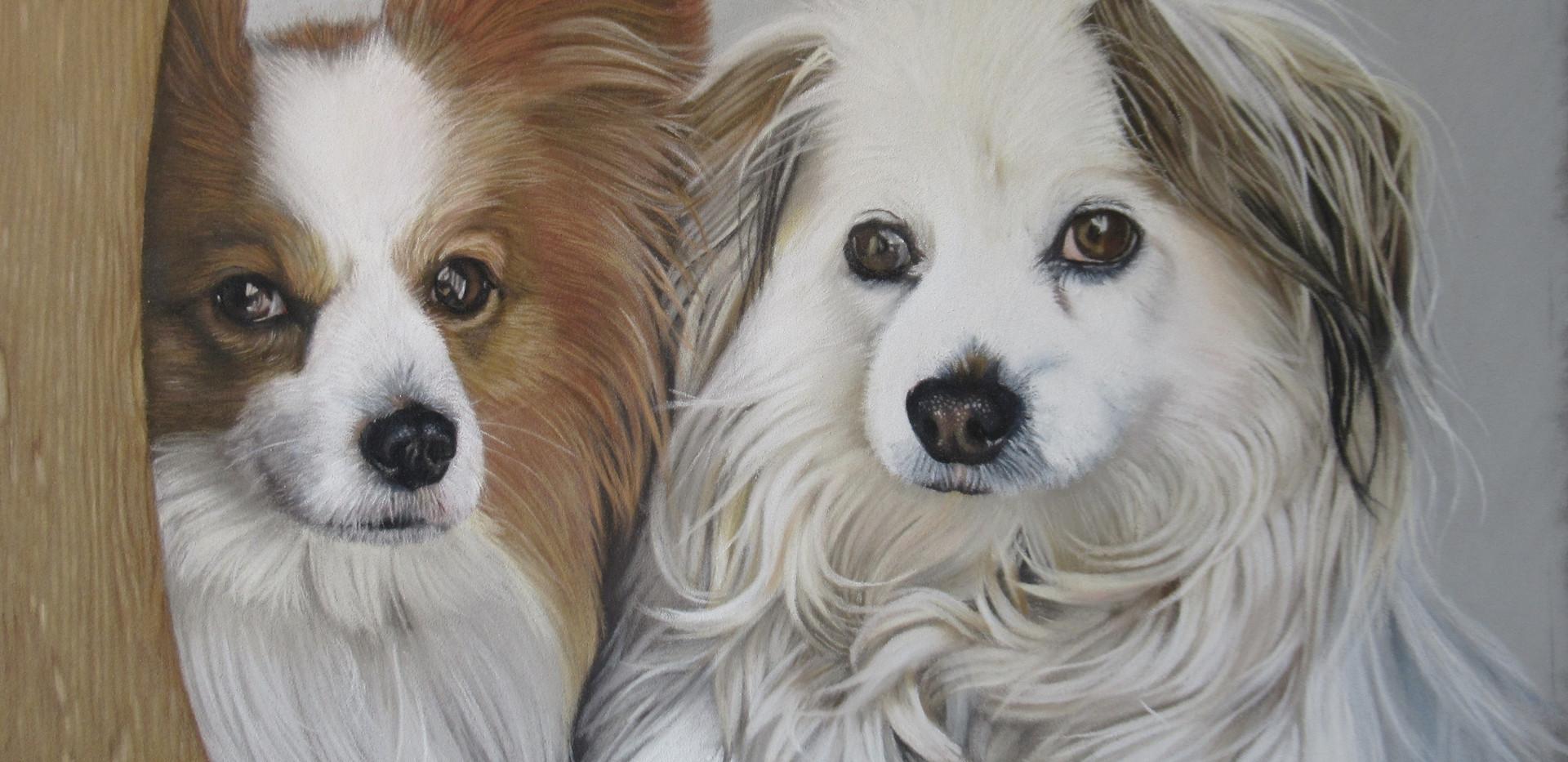 Duke and Eva. Pastel portrait 2020