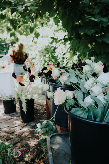 Garden Pop Up