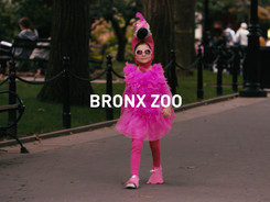 BronxZoo2.jpg