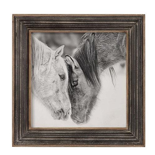 Horses Black & White Framed Print