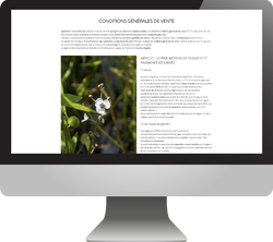 hortense-rossignol-graphisme-angers-site-ecommerce-14