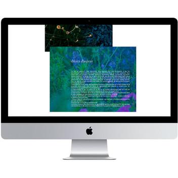 site-internet-dutilleux-mentions.jpg