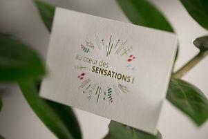 carte-de-visite-hortense-rossignol032.JP