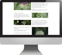 hortense-rossignol-graphisme-angers-site-ecommerce-12