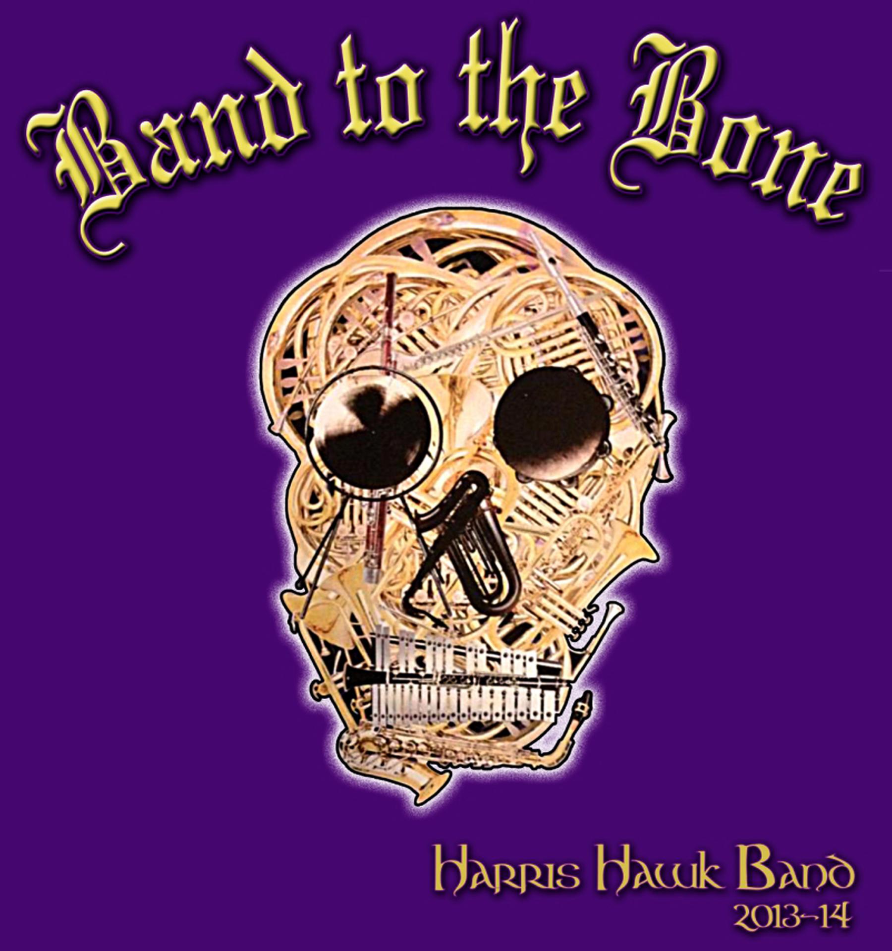 Band to the Bone.jpg