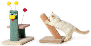 cat_toys.jpg