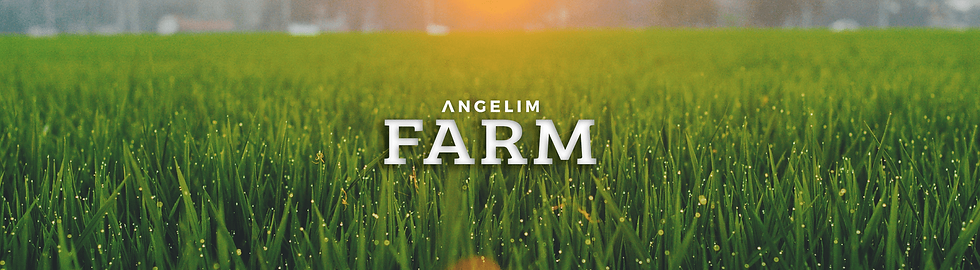 banner farm.png
