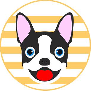 BostonCoin puppy face logo