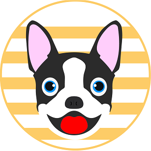 The BostonCoin Pup*date April 2019