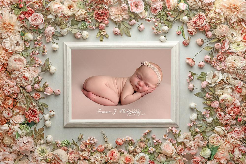 Calgary Newborn Photographer Calgary Baby Photographer Calgary Baby Photos Calgary Newborn Photography Okotoks Newborn Photography Dewinton Newborn Photographer
