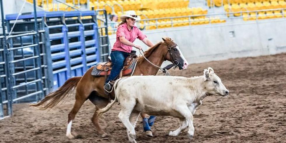 Brave Horse Brave Rider Clinic (1)