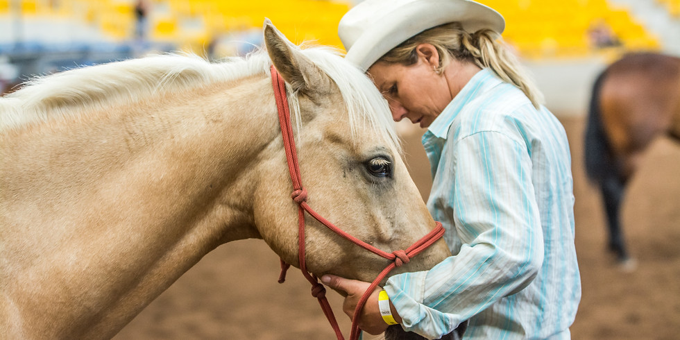 Brave Horse Brave Rider Clinic