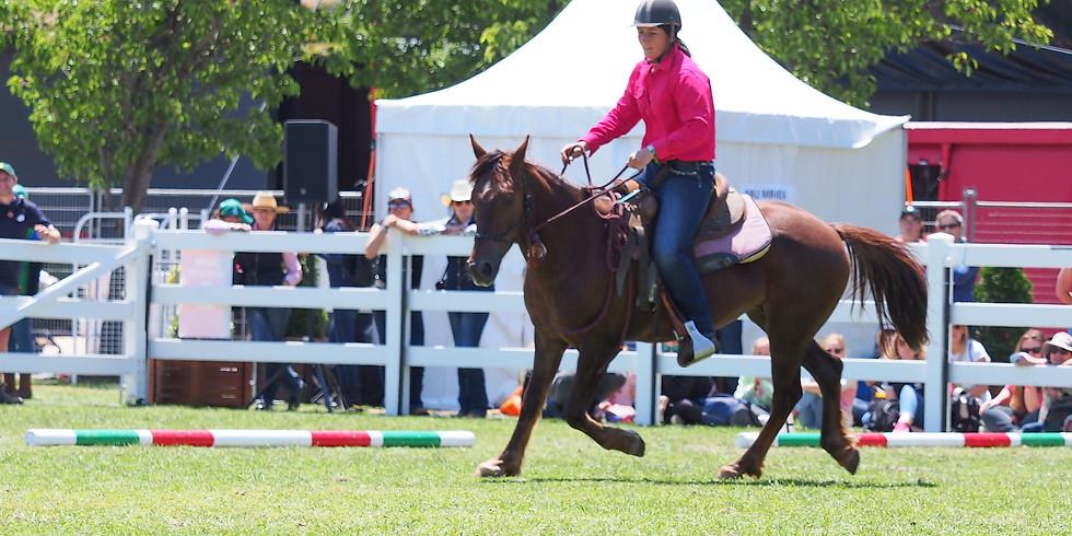 Go slow To Go Fast Horsemanship Clinic