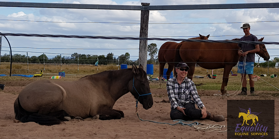 Calm Connection 2 Day Horsemanship Clinic. (Meet the Brumbies)