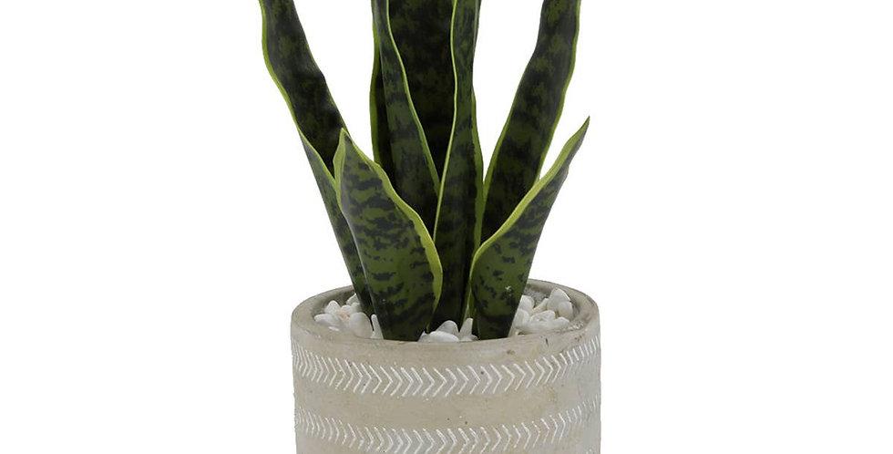 Faux Snake Plant