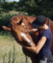 Etirement cheval