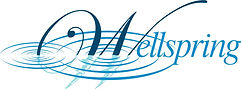 Wellspring logo with rings three colors.