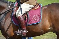 Army Equitation AMS