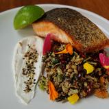 Huon salmon TAS-CHILL Restaurant Bar-Bell City Preston