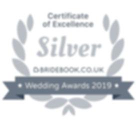 silver-509x469.jpg