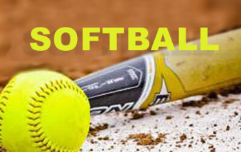 softball graphic.png