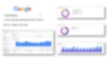 Google_Insights.PNG