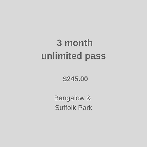 3 month unlimited Class Package