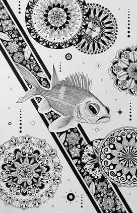 Fish Dreams