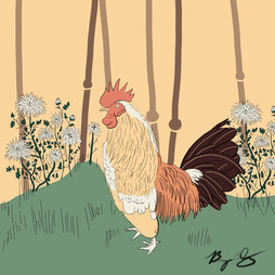 Japanese Rooster