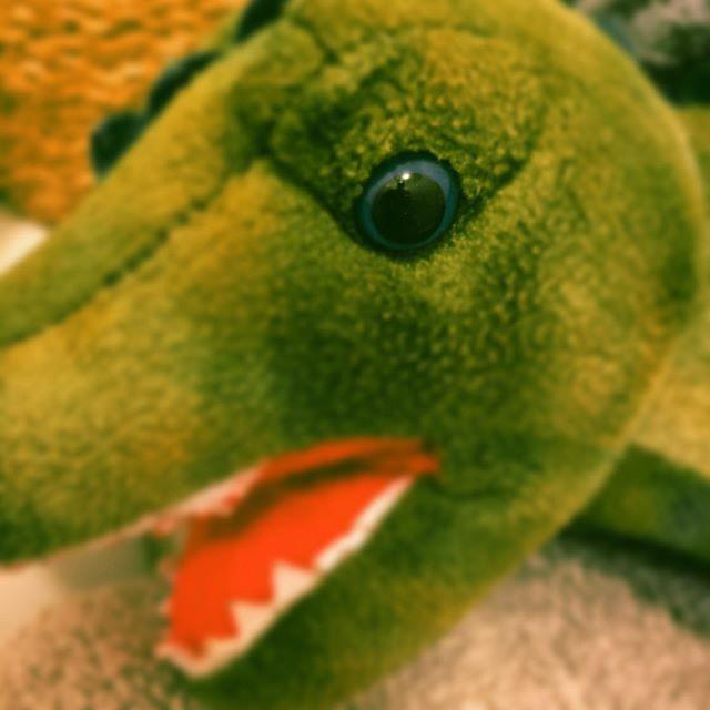 Freshly washed dinosaur