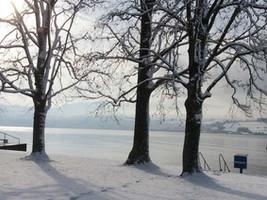 Stimmung-Seesauna-Lattenberg.jpg