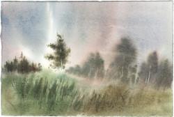 Landscape, etude