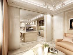 Apartment kitchen / living