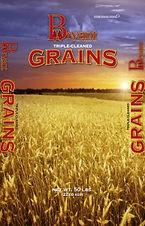 GrainBag-193x300 (1).jpg