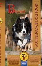 Dog21Maintenance-193x300.jpg
