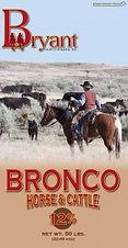 Bronco-HorseBag-155x300.jpg