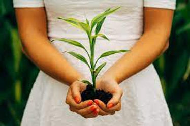 lady with plant.jpg