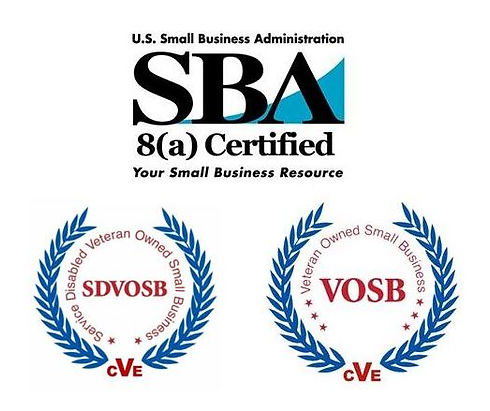 8(a)&SDVOSB&VOSB2.JPG