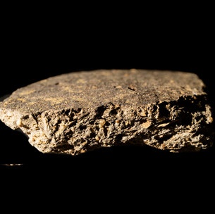 EMWSG - Early medieval ware sparse shell and grit