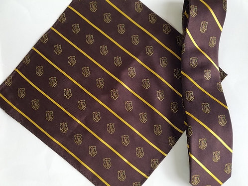 Iota Phi Theta Tie & Pocket Square Set