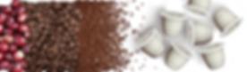Le café en fruit, grain, moulu et sous capsule Terramoka 100% biodégradable, 0% aluminium, capsule expresso, capsule biodégradable