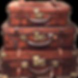 Les valises Terramoka
