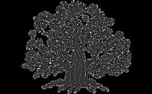 hyaluronpen paris, hyaluron pen, repulper lèvres, injections lèvres paris, acide hyaluronique paris, beauty derm, beautyderm, candylips paris, microneedling prix, lèvres sexy, volume lèvres, hyaluron pen paris, injection acide hyaluronique, fillers, mésolips, méso lips, volume bouche