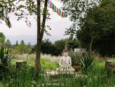 La tercera y cuarta Noble Verdad de Buda