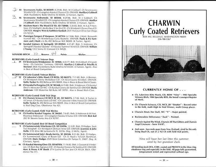 Curly Coated Retriever CCRCA championship show 1988 catalogue
