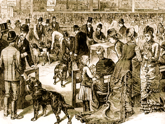 Westminster Dog Show Illustration from 1877