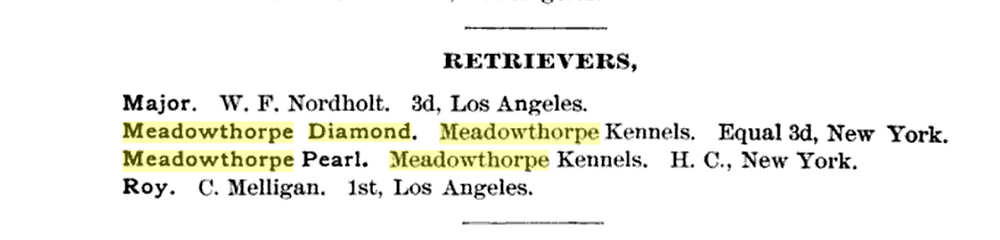 Text listing of curly coated retrievers exhibited at AKC dog show in 1890.
