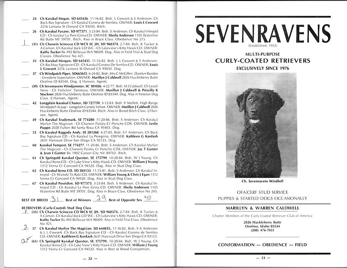 curly coated retriever CCRCA championship show specialty 1988 catalogue